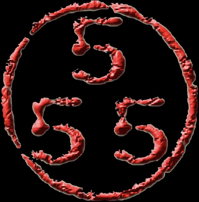 珠海555纹身馆